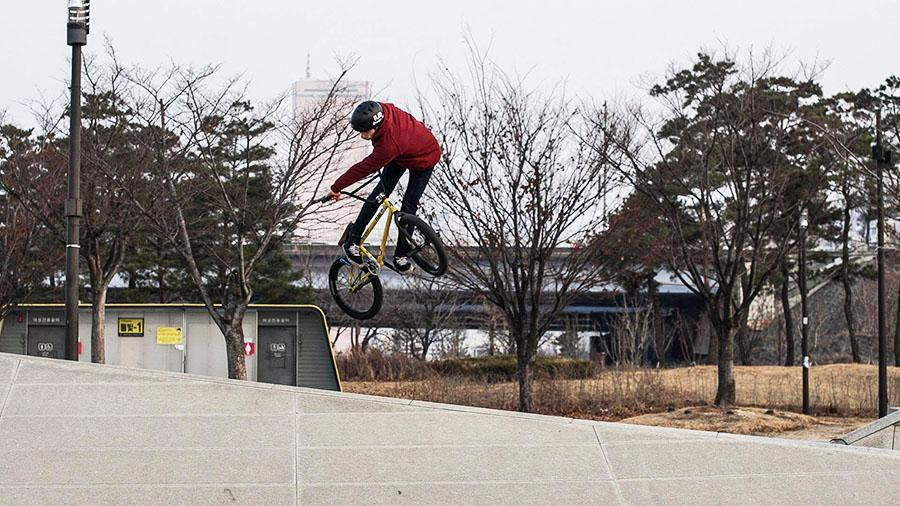marek360lookback