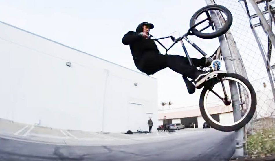 Justin Shorty - COOL BEANS by S&M BIkes